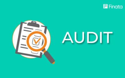 Audit: Pengertian, Jenis, Fungsi, dan Tahapannya